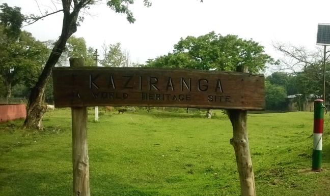 welcome-to-kaziranga-national-park