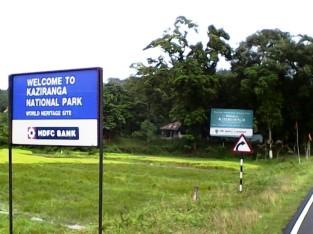 Kaziranga National Park, Kaziranga Assam, Indian Rhino Kaziranga