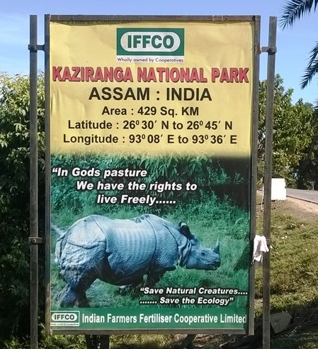Kaziranga National Park Rhino, Kaziranga Assam, Kaziranga Safari, Assam Tourism