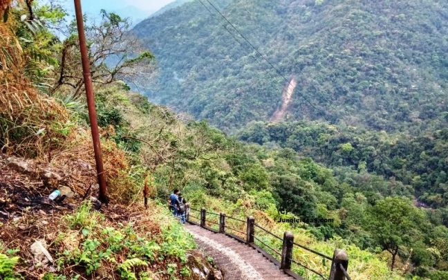 Lovely view of Landscape on trek to Living Root Bridge at Nongriat ~ Cherrapunji ~ Meghalaya ~ India