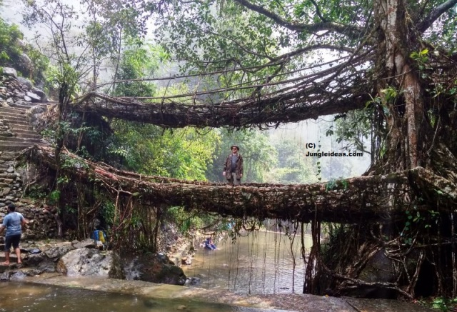 Our visitor from Slovakia poses for a pic at the Double Decker Root Bridge at Nongriat ~ Cherrapunji ~ Meghalaya ~ India