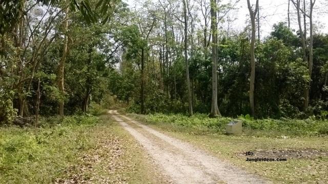 Orang National Park, Kaziranga National Park, Hotels in Kaziranga, Kaziranga
