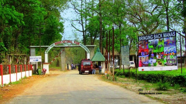 Manas National Park, Jeep Safari Manas, Manas Hotels, Kaziranga Assam
