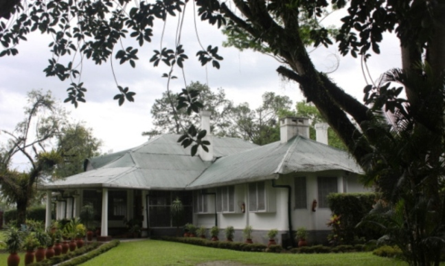 Tea Gardens Assam, Tea Garden Bungalow, Kaziranga National Park, Assam