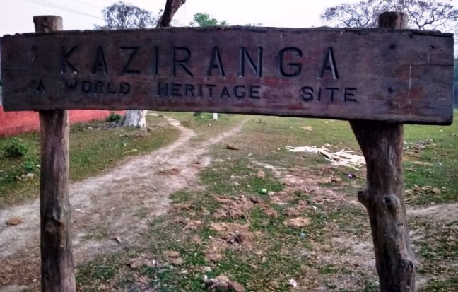 Kaziranga National Park, North East India, Assam, Meghalaya, Majuli, Guwhati