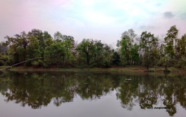 Garbhanga Forest, Kaziranga National Park, Chandubi Lake, Guwahati, Pobitora Sanctuary