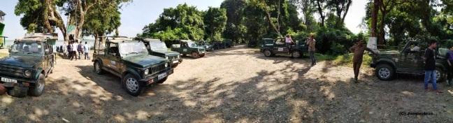 Kaziranga National Park, Jeep Safari Kaziranga, Elephant Safari, Kaziranga Tours