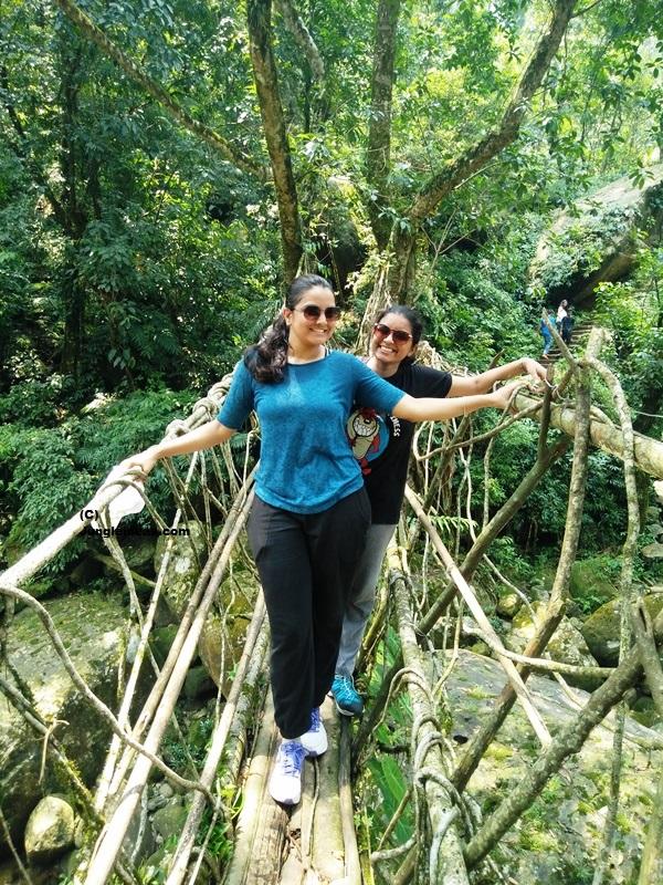 Kaziranga National Park, Kaziranga Tours, Assam Tour, Meghalaya Tour, Nagaland