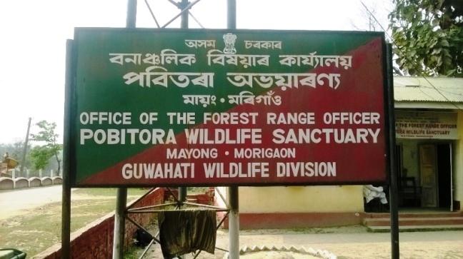 Kaziranga National Park, Guwahati, Guwahati Hotels, Assam Tourism, Kamakhya Temple